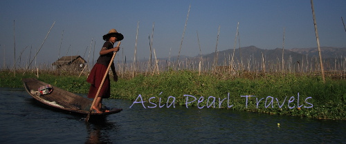 Asia Pearl Travels